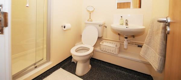Liverpool St Andrews Gardens Bathroom