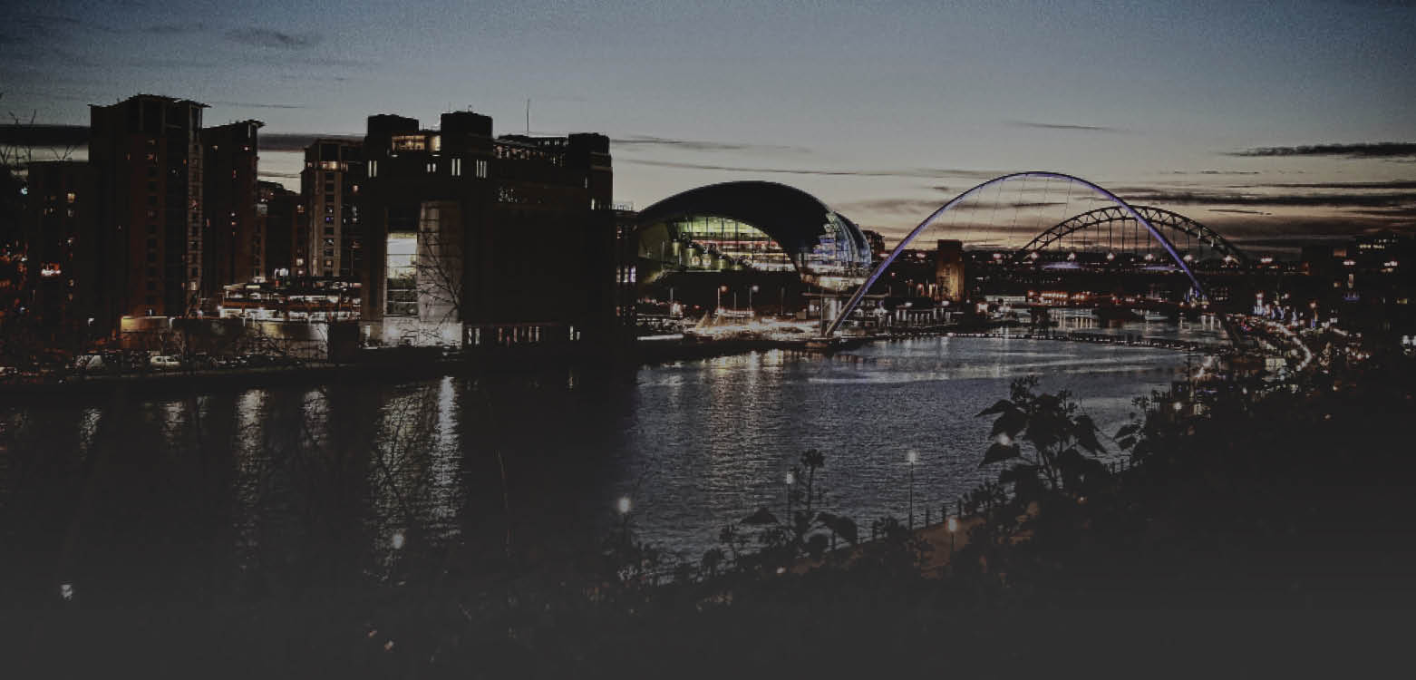 Newcastle City View Banner